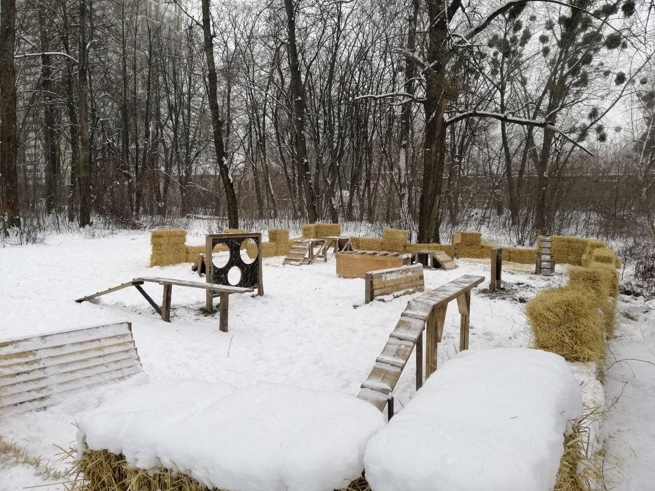 У Дніпровському районі Києва створили майданчик для вигулу собак