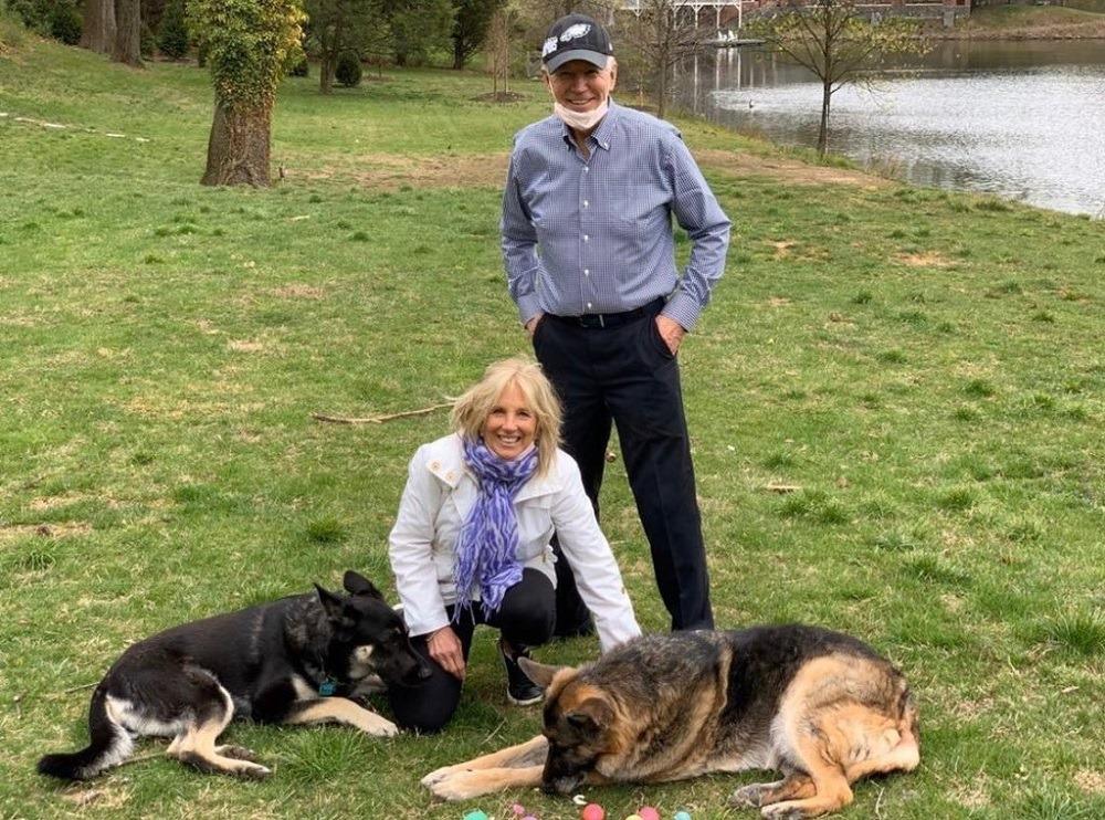 Собак Байдена вивезли з Білого дому через те, що вівчарка вкусила охоронця
