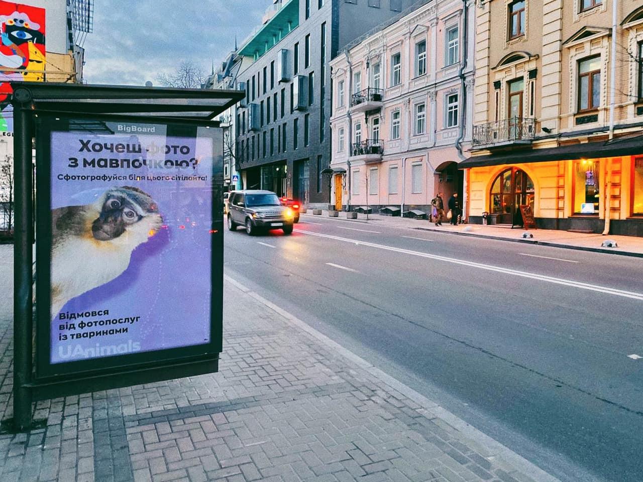 Українські активісти запустили кампанію проти фотопослуг із тваринами