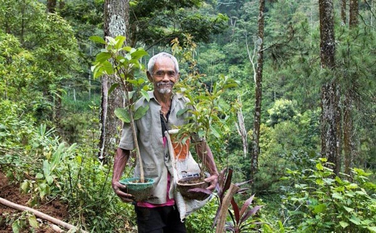 Аласан Садіман індонезія