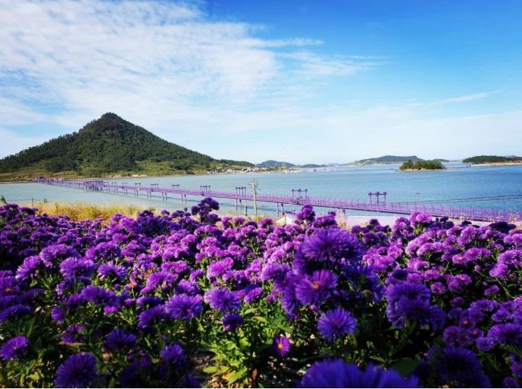 острів корея