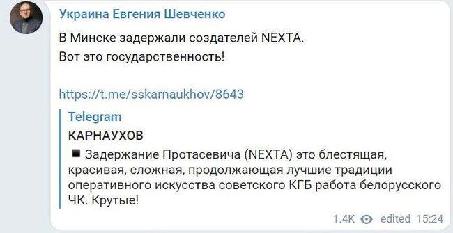 Шевченко підтримав Лукашенка у затриманні Протасевича