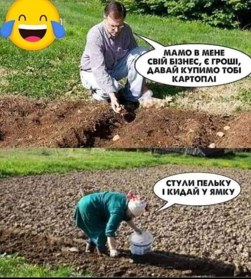 Наведіть лад у саду та на городі