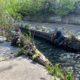 """Инициатива """"Києве, мий"""" устроит уборку реки Лыбидь в центре столицы: как присоединиться"""