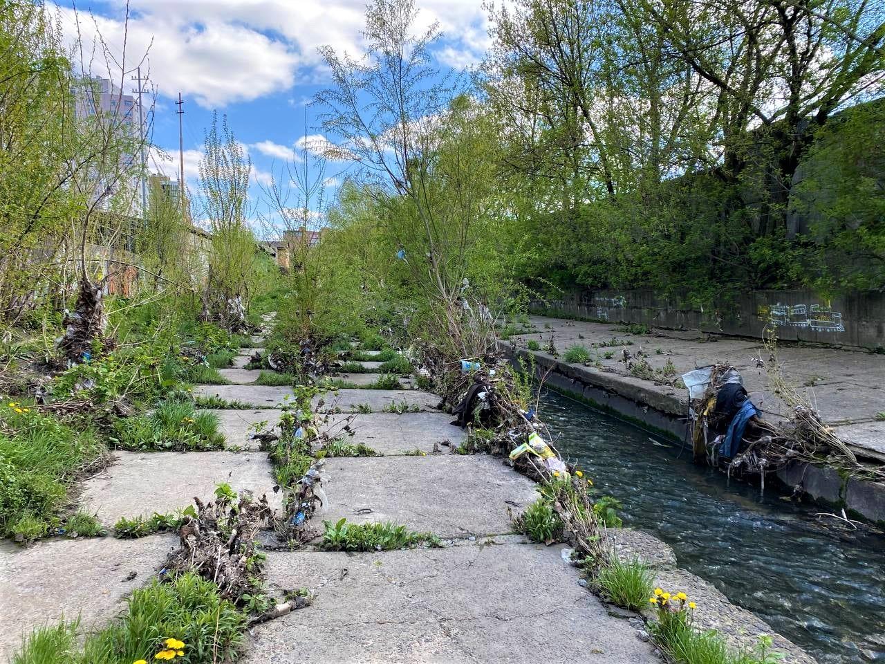 прибирання річки Либідь