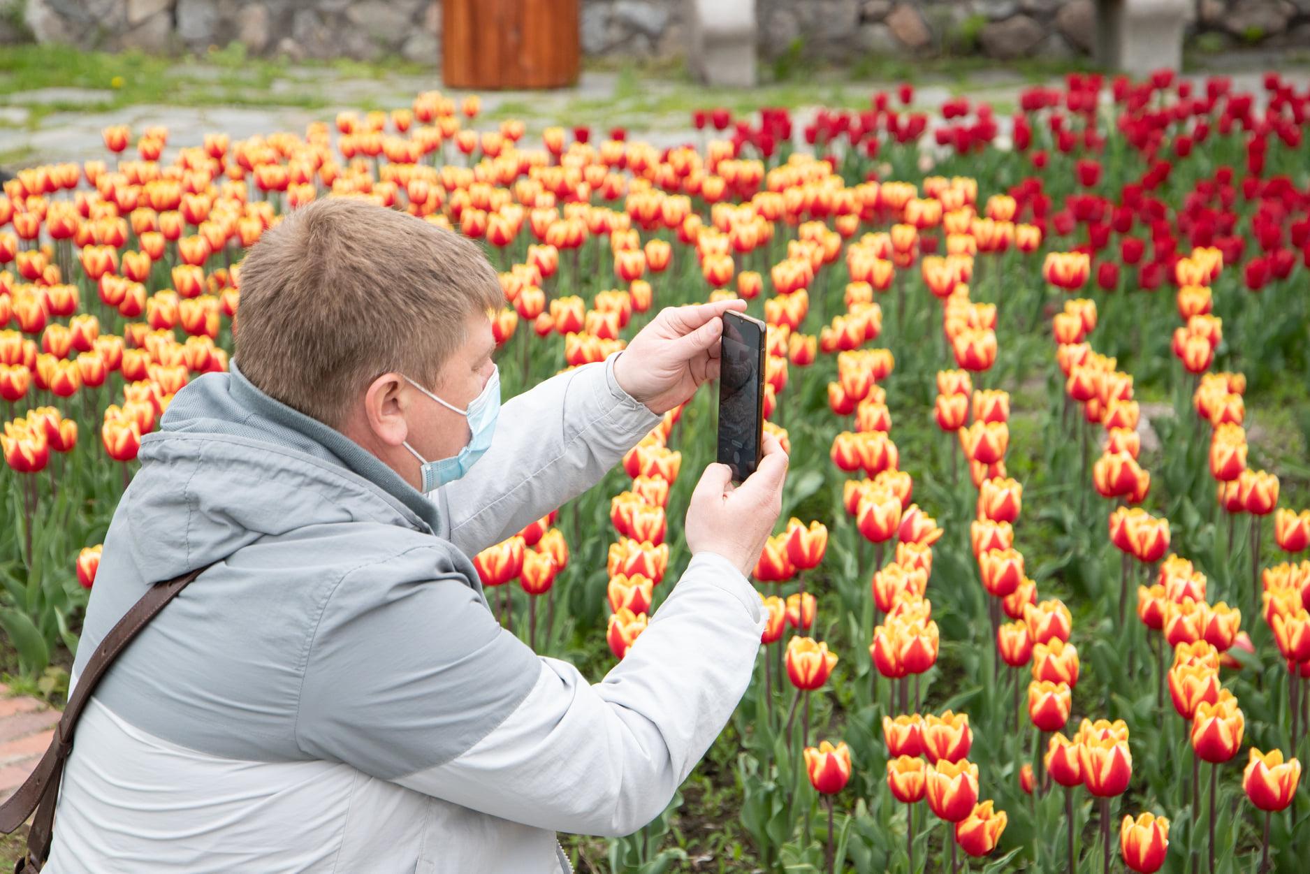 На Співочому полі в Києві відкрилася виставка тюльпанів