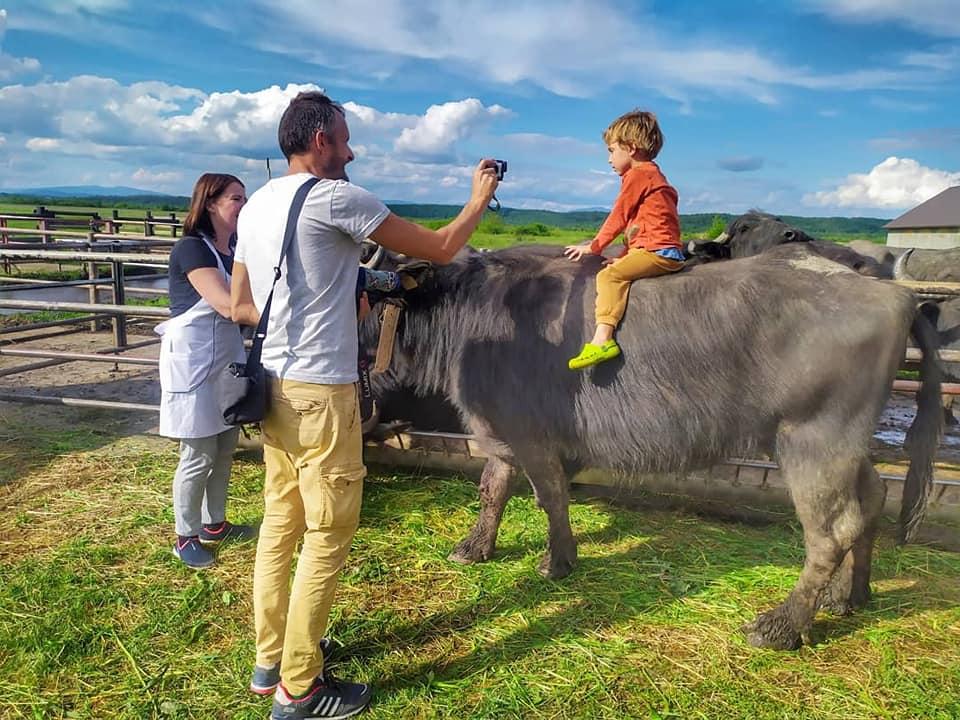Зелений або сільський туризм