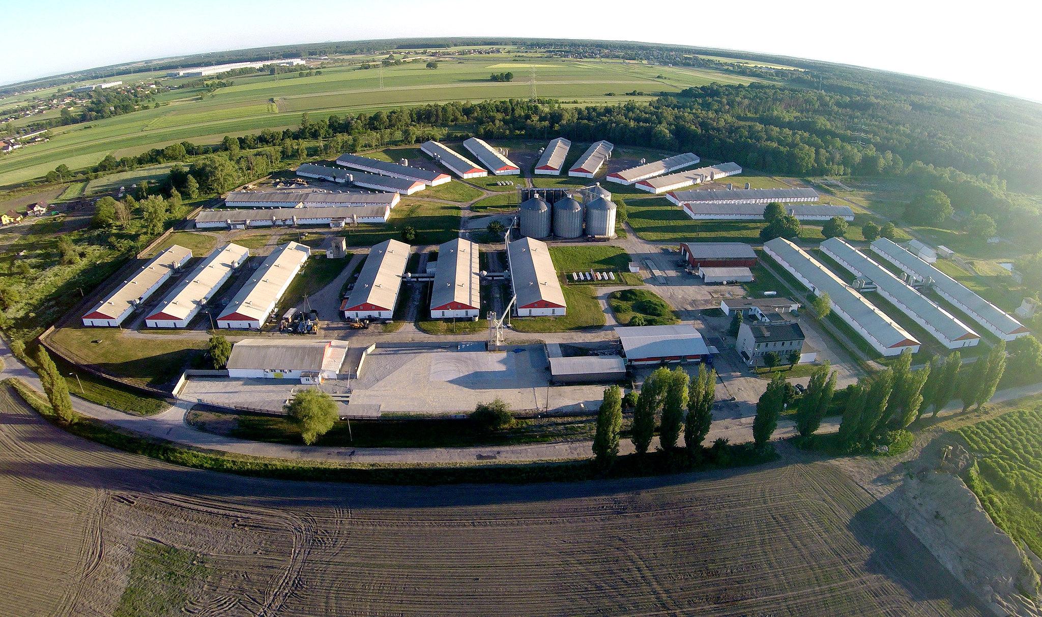Хутро в Польщі: історія боротьби