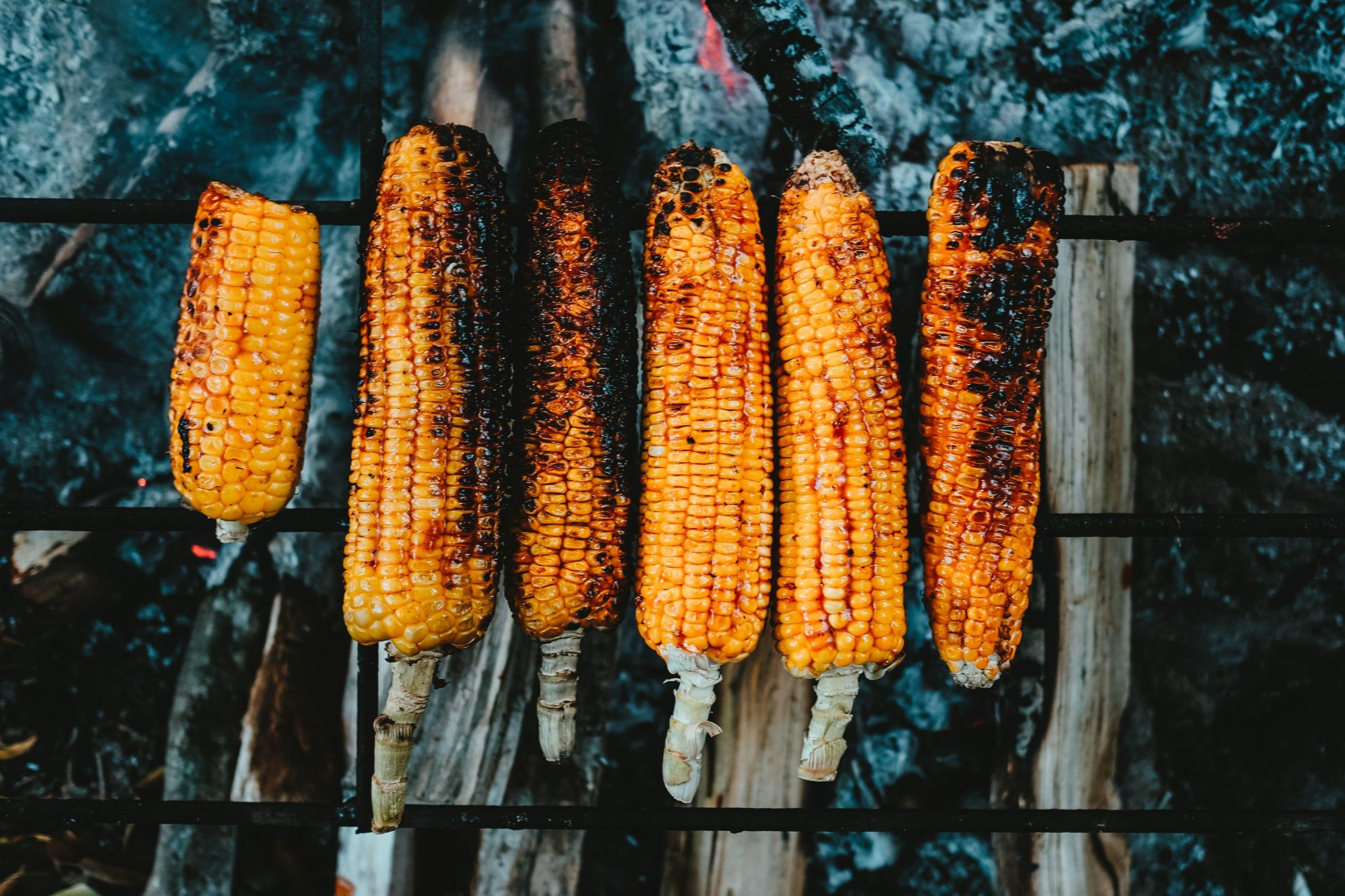 день кукурудзи