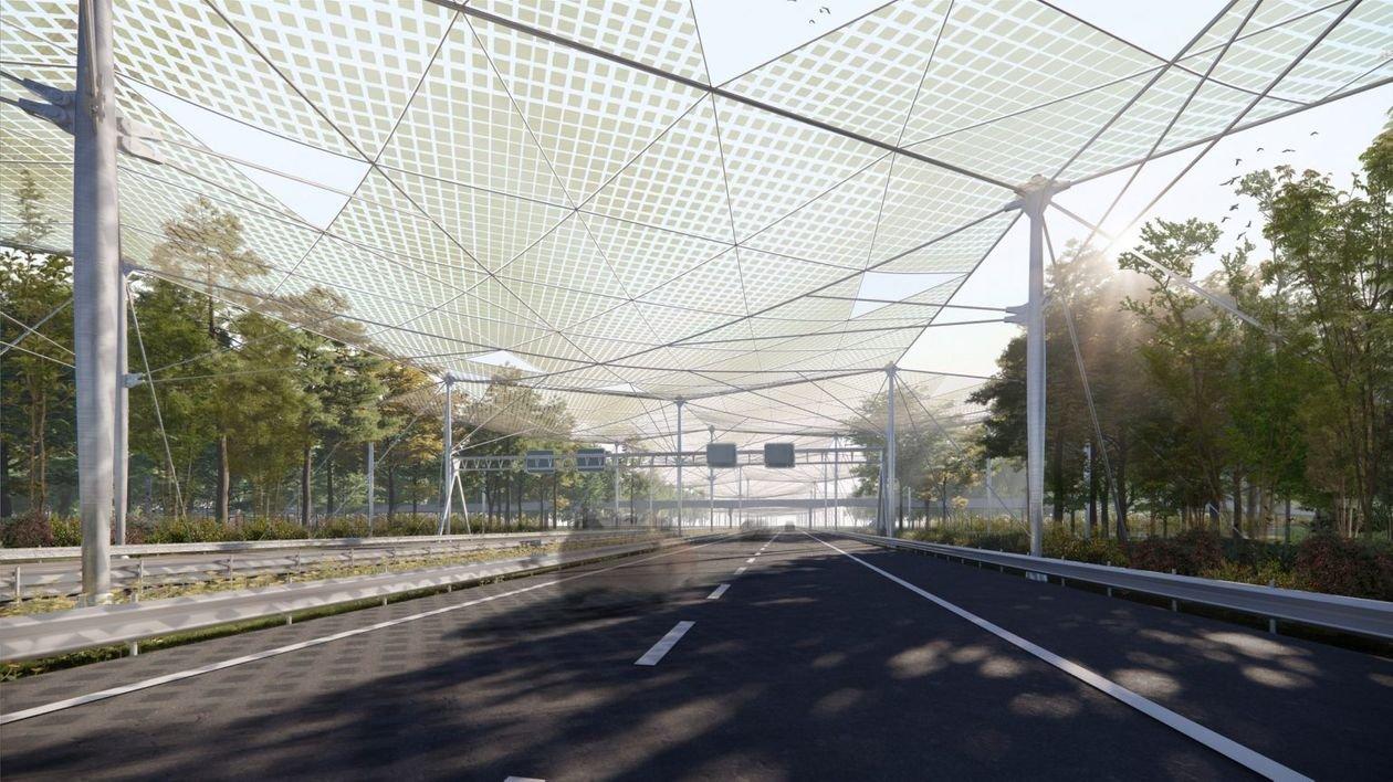 У Нідерландах запропонували очистити повітря для комах, що літають над дорогою: як це буде виглядати