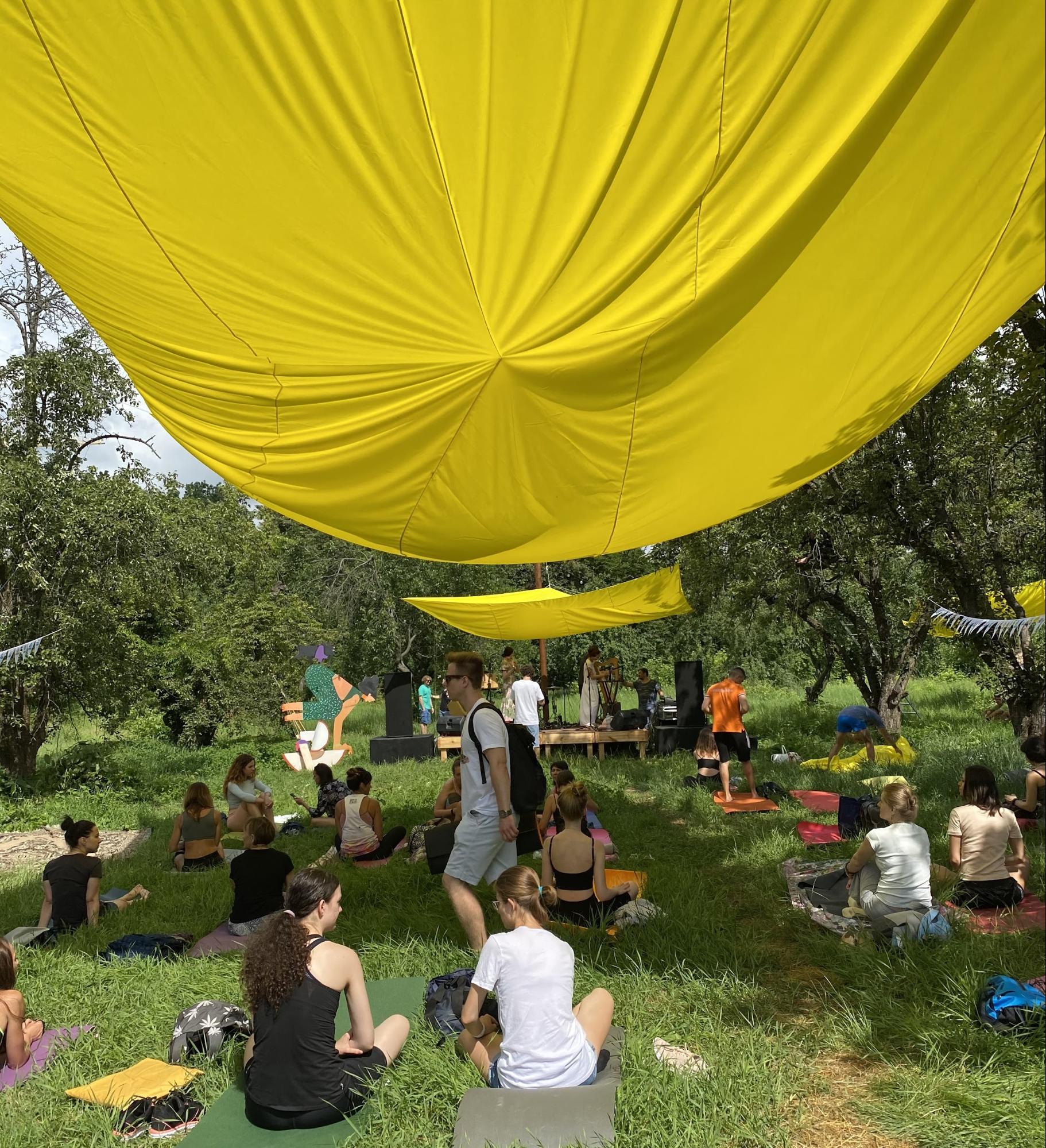 любители йоги устроили масштабный йога-пикник