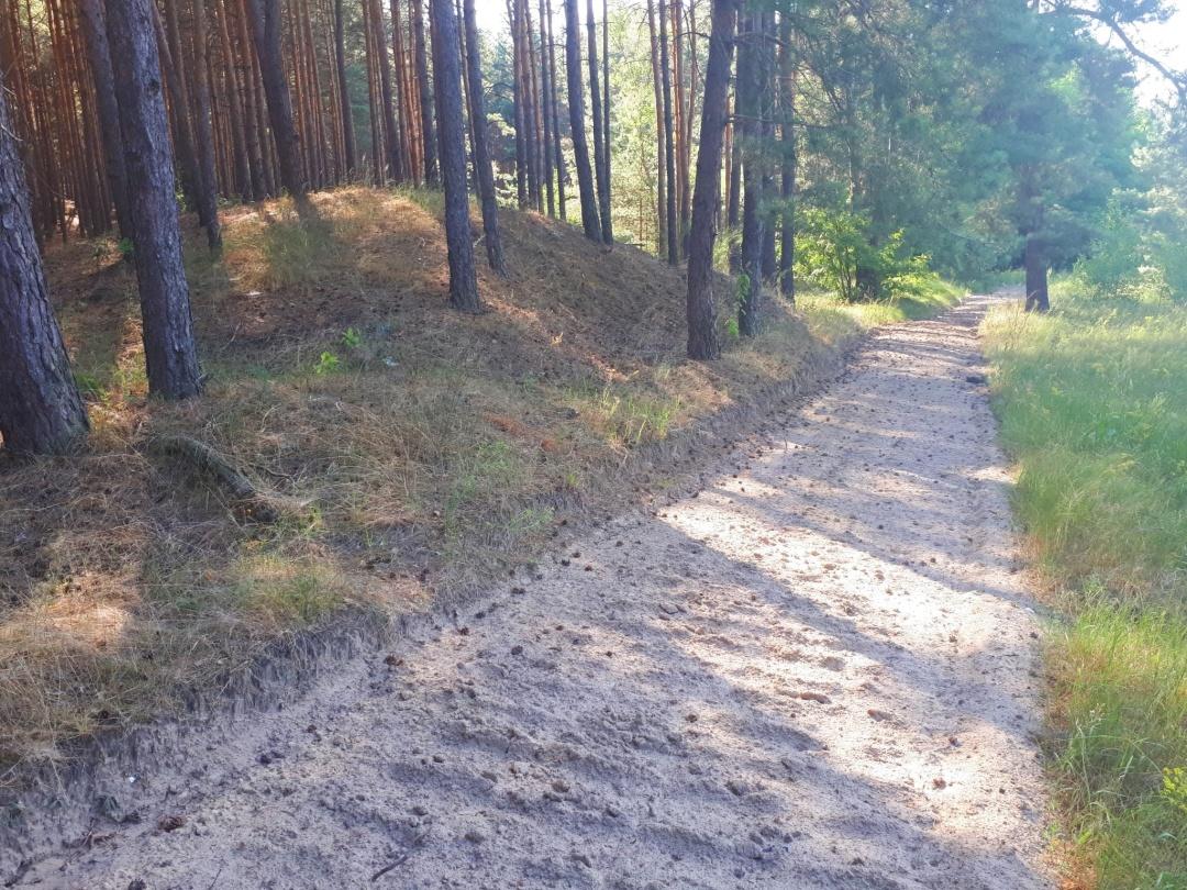 Ліси Черкаської області
