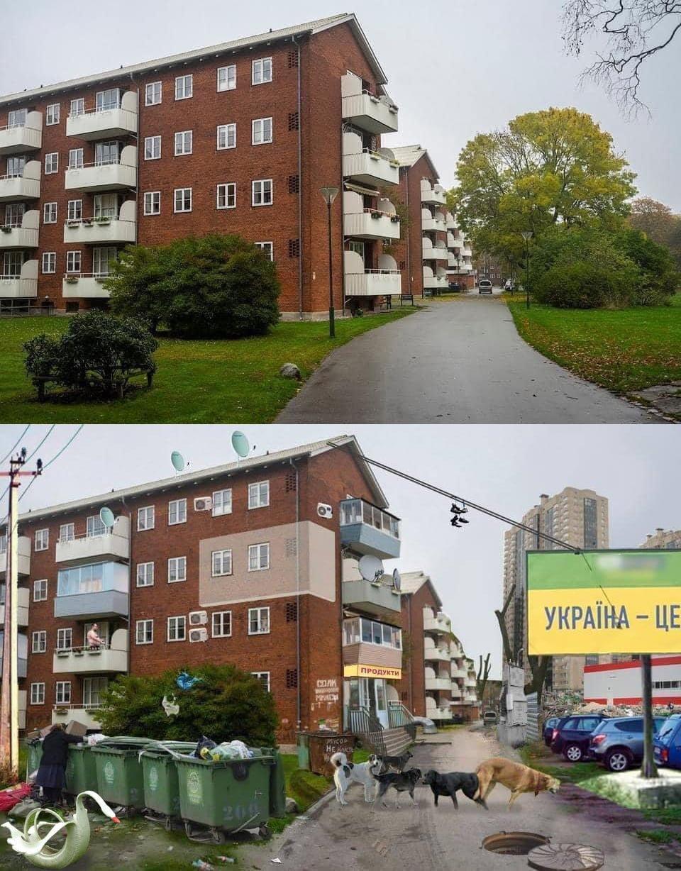 Хвороба українських дворів: що з ними не так і що робити