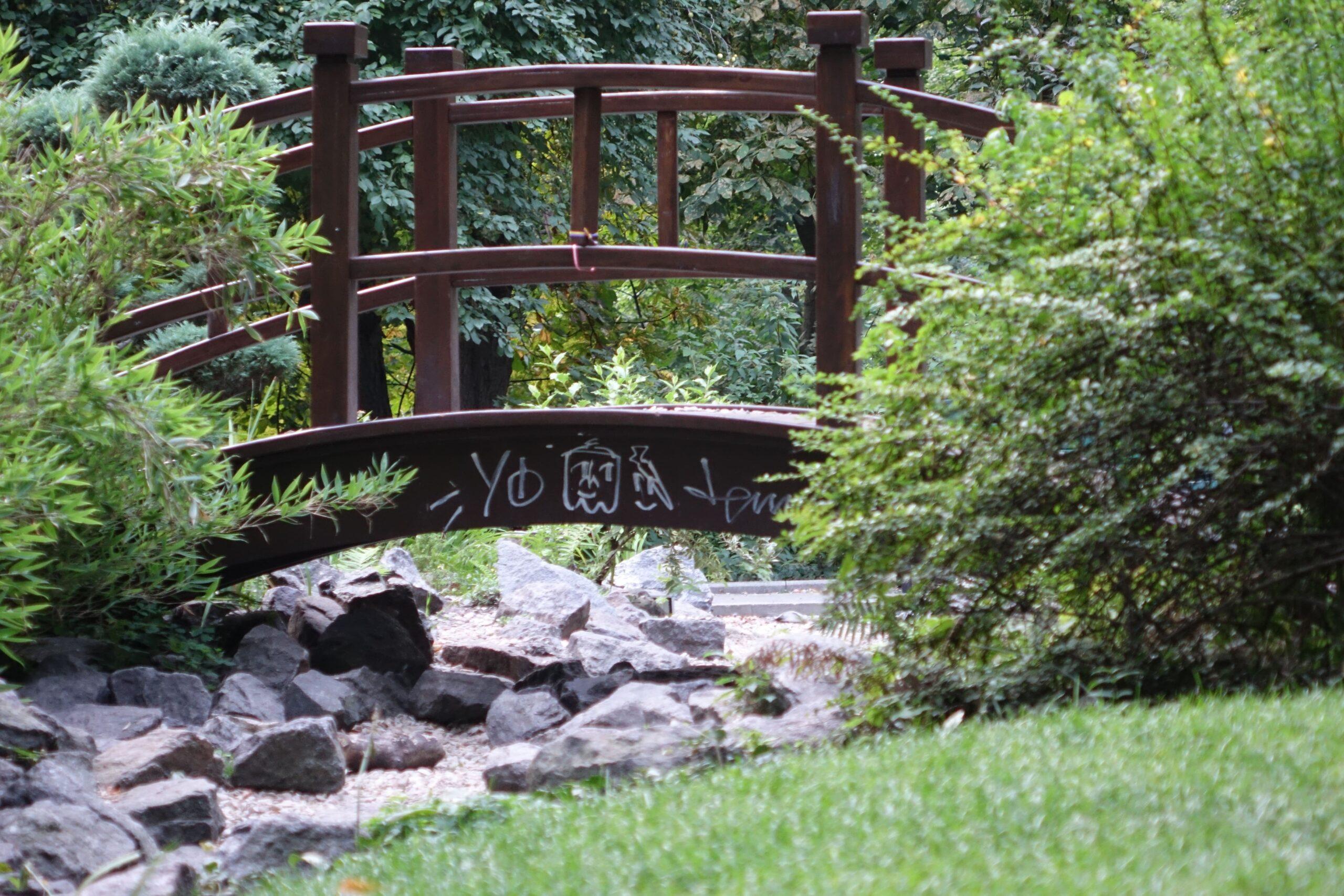 Поетична галявина в ботанічному саду