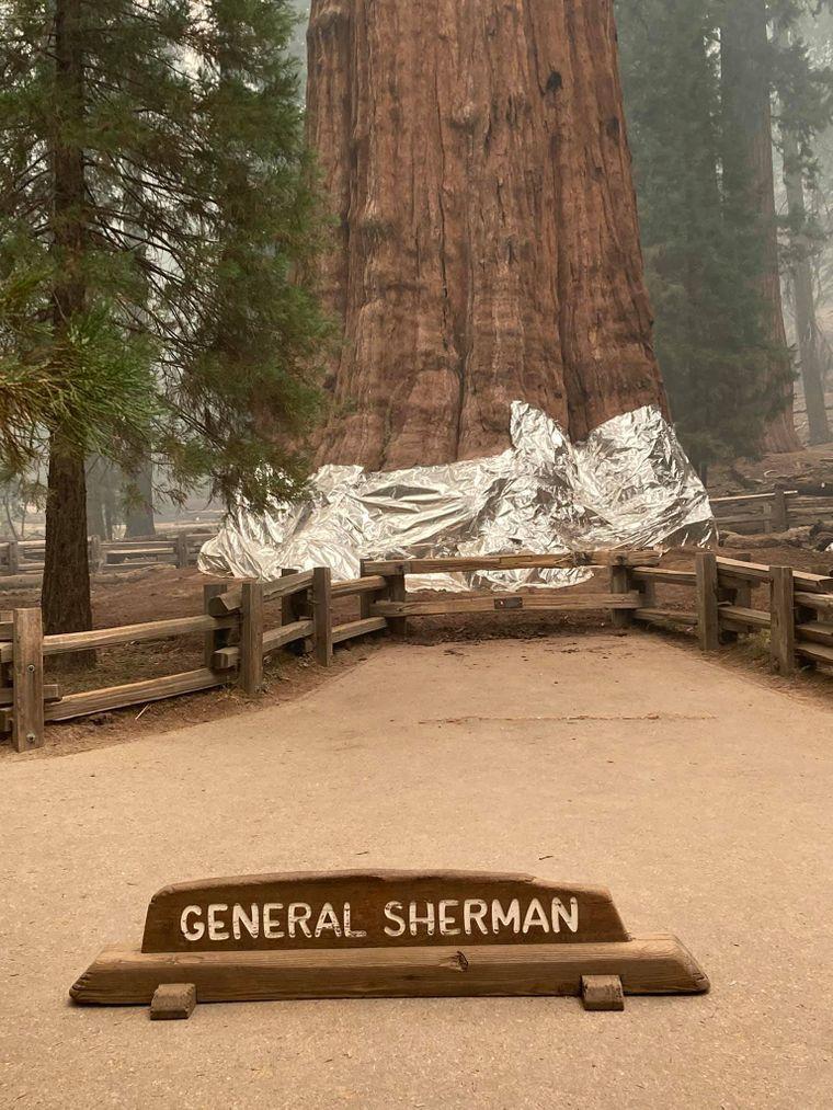Генерал Шерман