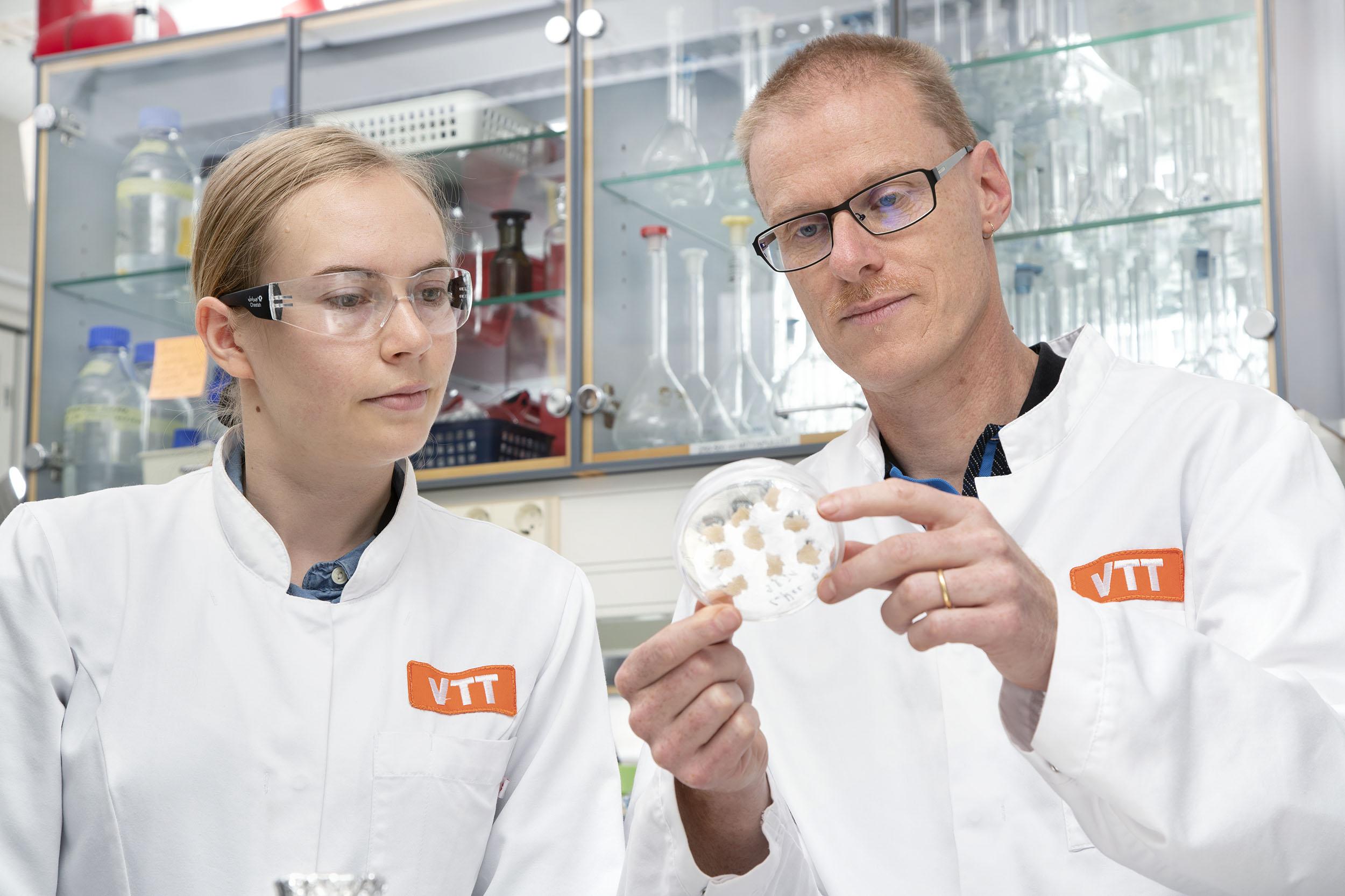У Фінляндії вчені виростили каву у лабораторії