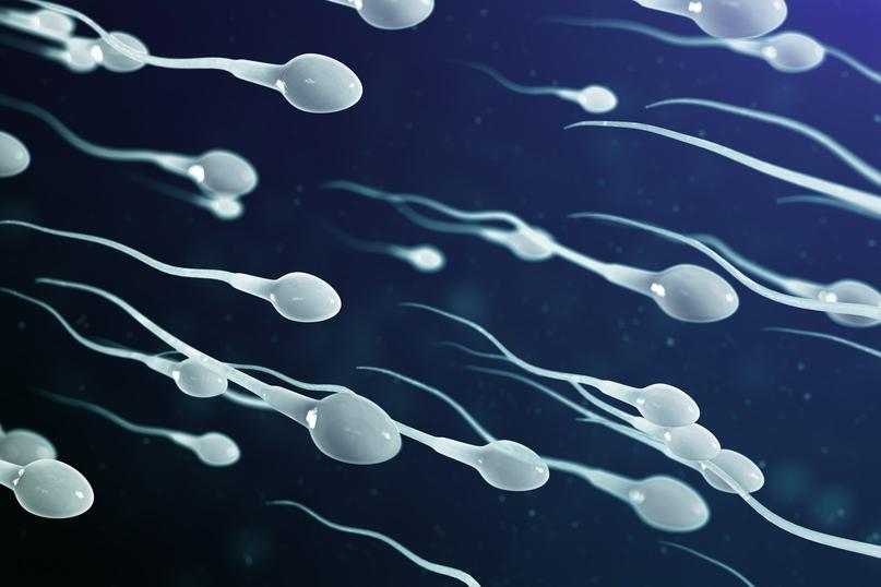 контрацепція