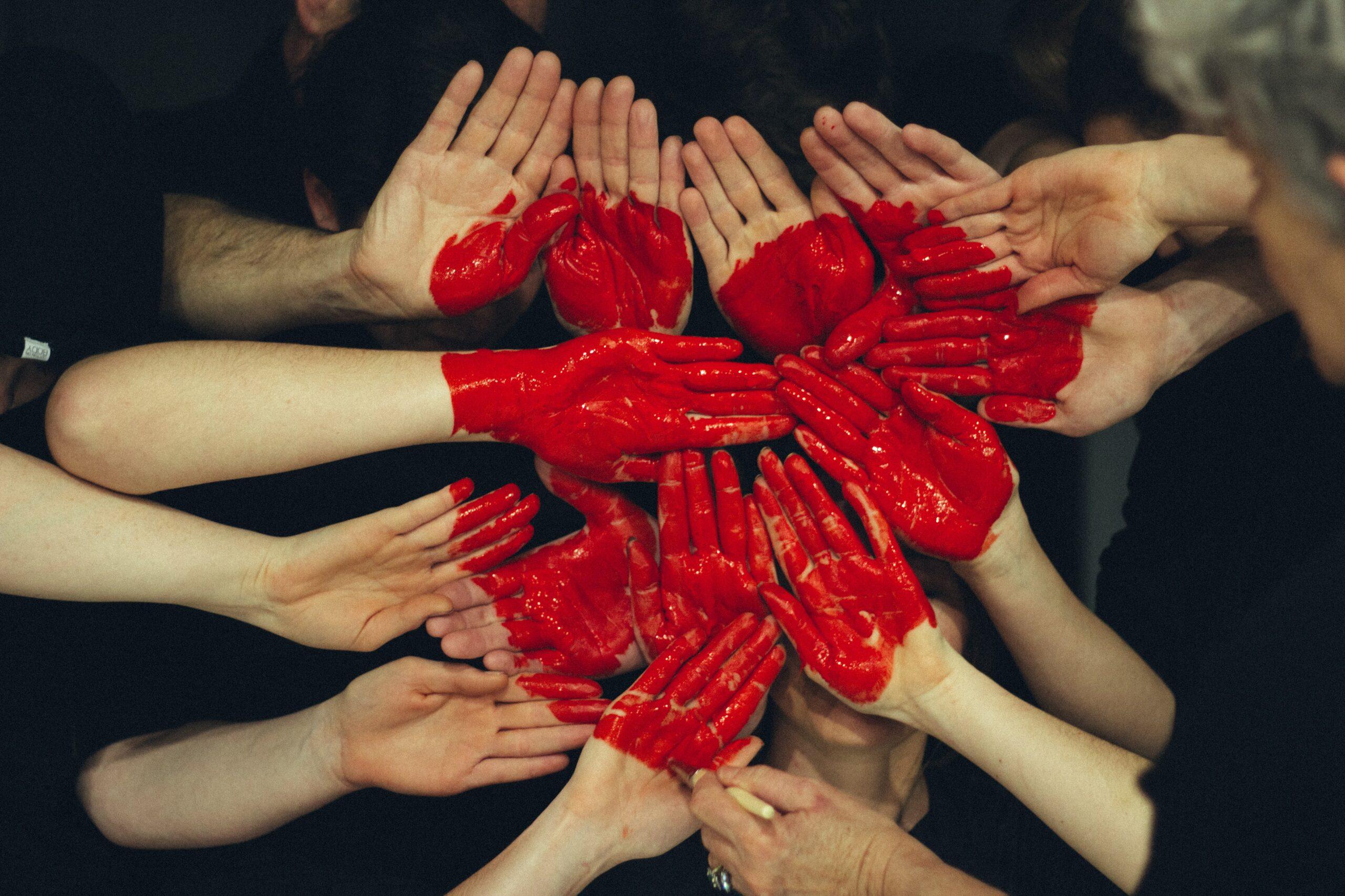 Підтримка зоозахисного руху: як обрати ефективну організацію?