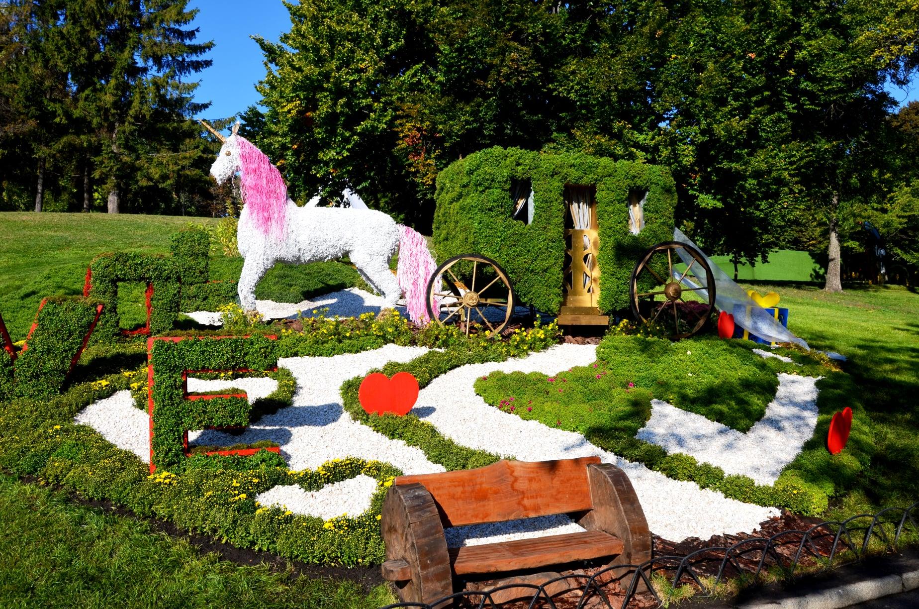 виставка хризантем